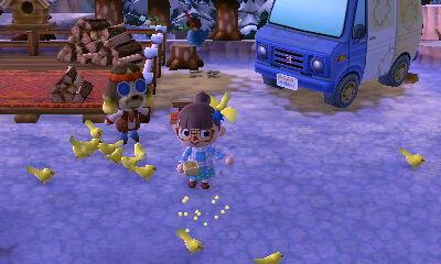 オートキャンプ場でパニエルに豆をもらって小鳥にエサをあげる方法